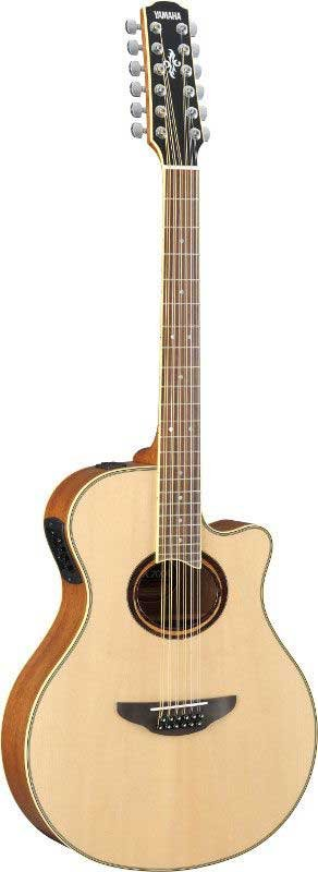 APX Series Guitar, 12 String