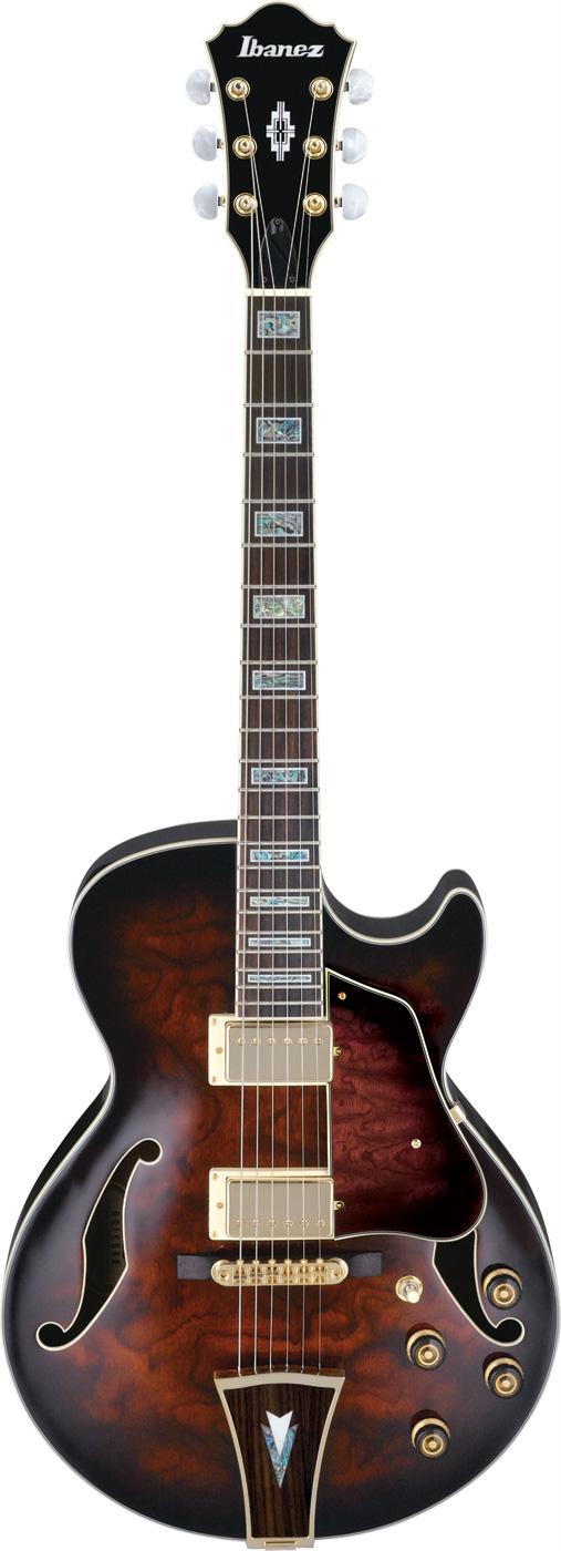 Electric Guitar DarkBrown Sunburst