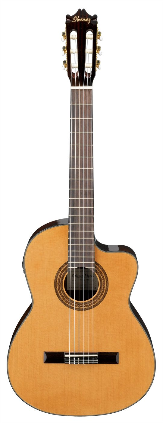 Acoustic Classical Nylon String GA Series w/Cutaway