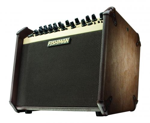 2-Ch 120W Acoustic Guitar Amplifier