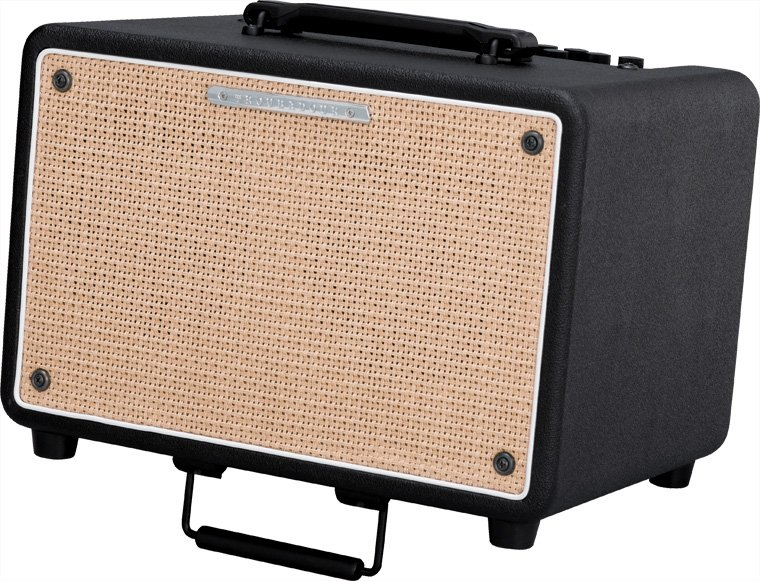 "150W 2x6.5"" Stereo Acoustic Guitar Amplifier"