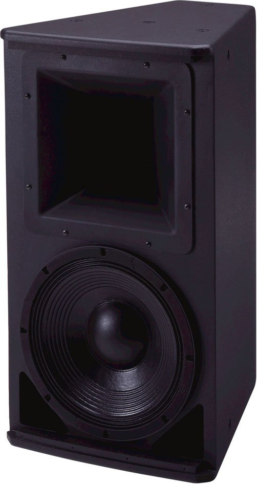 """12"""" 2-Way Speaker, 60 x 40 Degrees Rotatable Coverage"""