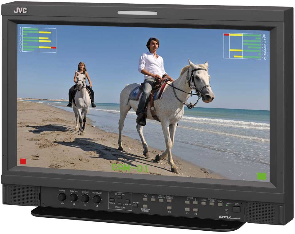 "17"" Multi-Format LED Monitor"