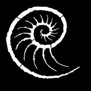 Steel Gobo, Sea Conch