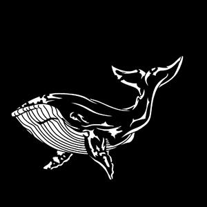 Steel Gobo, Sea Whale
