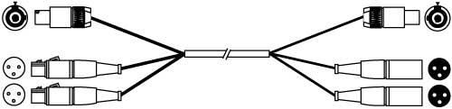 75 ft. PowerCon Grey/XLR-F/XLR-F to PowerCon Blue/XLR-M/XLR-M Audio/Power Cable