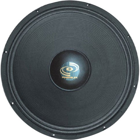 "Pyle Driver 18"" High-Powered Pro Subwoofer"