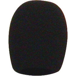 Black Foam Windscreen For PL35