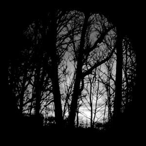 Gobo, Eerie Forest