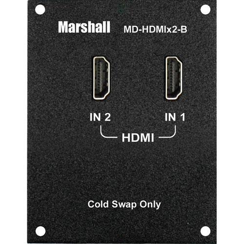 2 Channel HDMI Input Module (Type B)