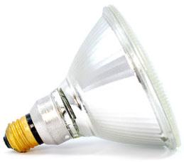 80W, 120V Par 38 Halogen Bulb