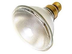 120V/80W Par 38 Spot Lamp