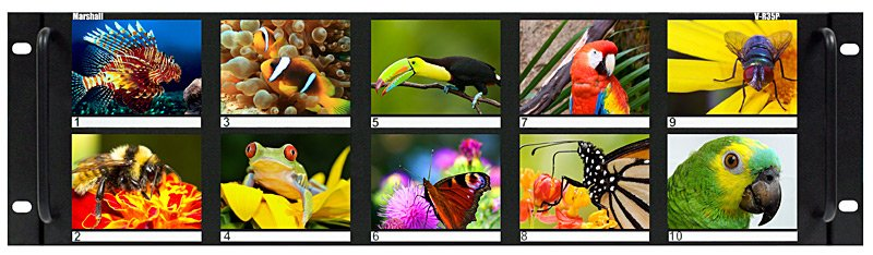 """Ten 3.5"""" LCD Rack Mounted Panel with Auto NTSC/PAL Detection"""
