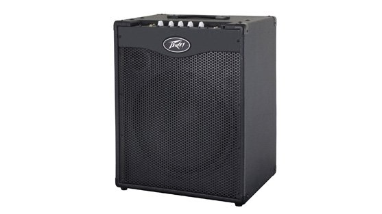 """300W 1x15"""" Bass Combo Amplifier with DDT Speaker Protection"""