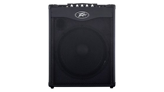"300W 1x15"" Bass Combo Amplifier with DDT Speaker Protection"