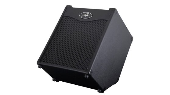 "100W 1x10"" Bass Combo Amplifier with DDT Speaker Protection"
