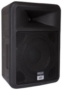 "12"" 2-Way 1000W Passive Loudspeaker in Black"
