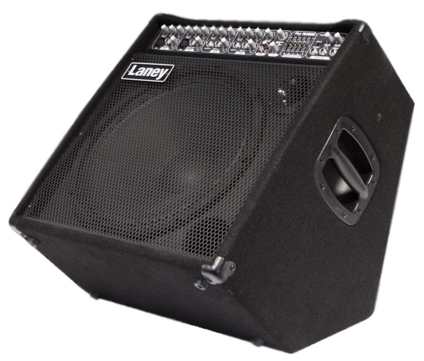 "300W 15"" Multi Instrument Amplifier"
