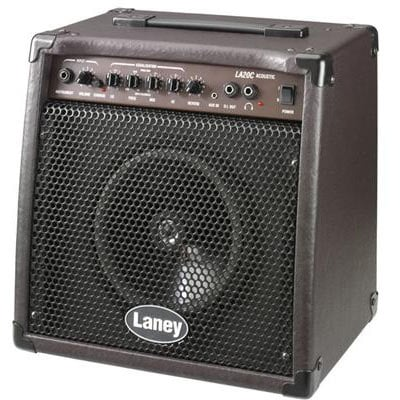 "20W 8"" Dedicated Acoustic Amplifier"