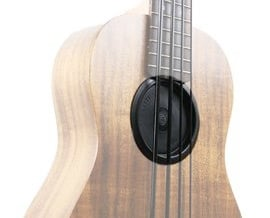 Feedback Freezer for Kala Acoustic U-Bass