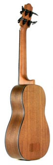 Solid Spruce Top U-BASS Fretted Bass Ukulele