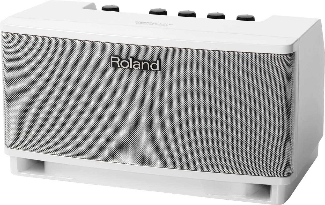 10W Modeling Microphone/Keyboard Monitor Amplifier in White