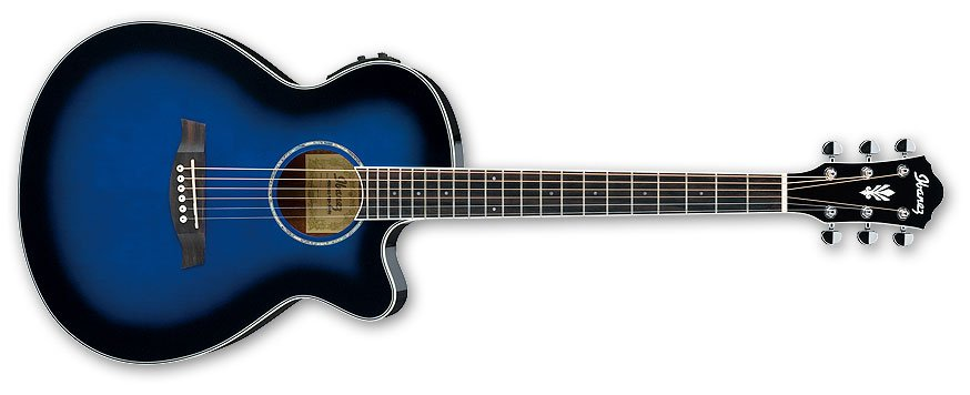 AEG Series Electric/Acoustic Guitar