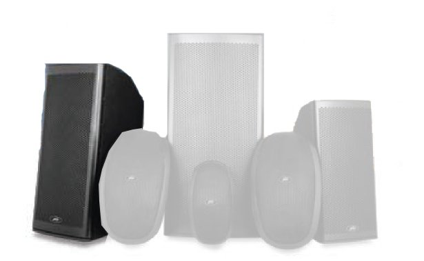 "10"" Elements Series 2-Way Molded Enclosure Outdoor Speaker"