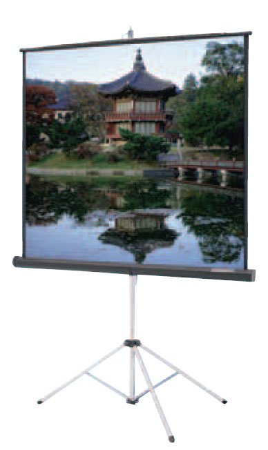 "52"" x 92"" Carpeted Picture King® Tripod Screen with Keystone Eliminator"