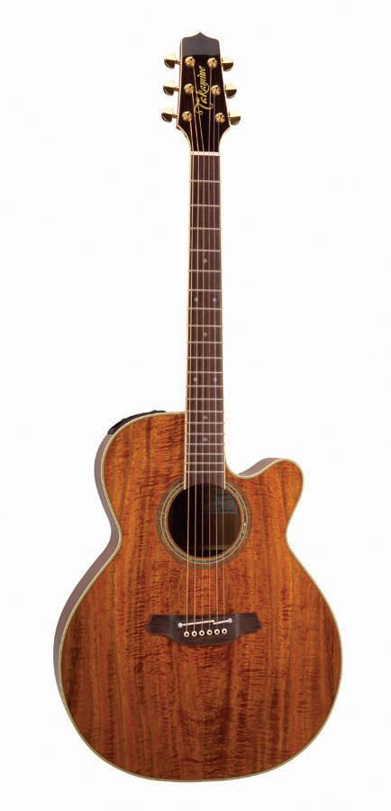 Legacy Series Gloss Natural NEX Cutaway Acoustic/Electric Guitar with Hardshell Case