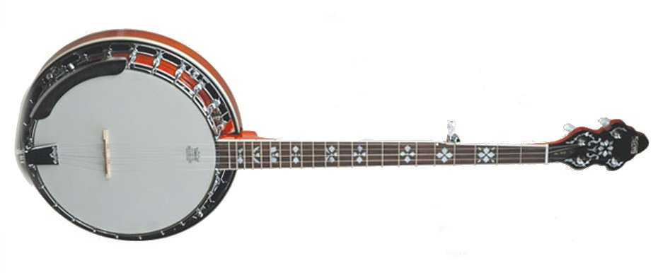 Songster Flathead Resonator Banjo with Brass Tone Ring