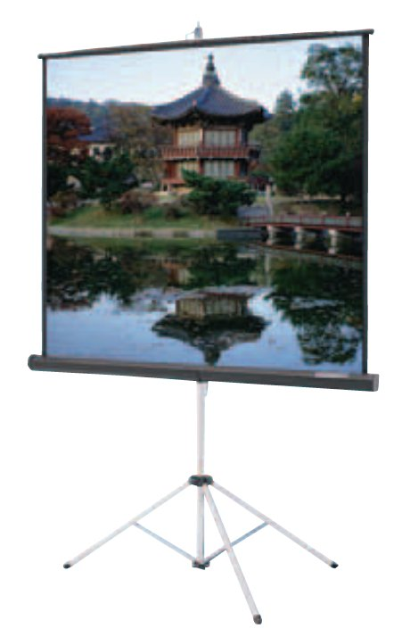"""50"""" x 67"""" Carpeted Picture King in Video Format with Keystone Eliminator"""