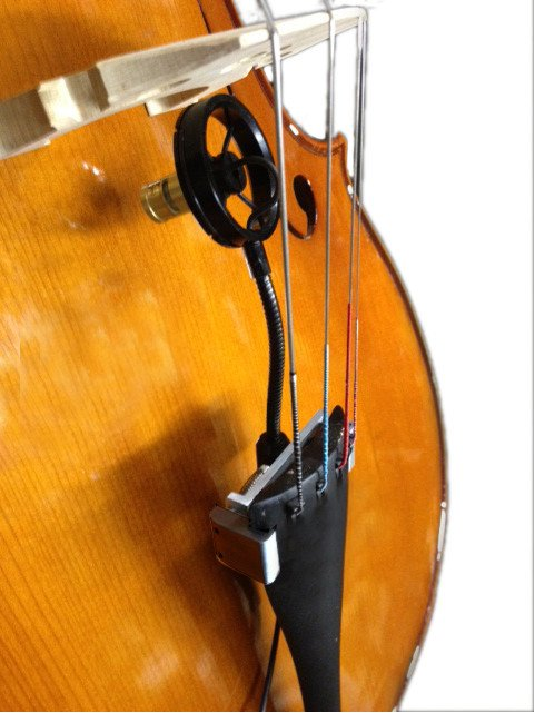 Acoustic Bass Microphone