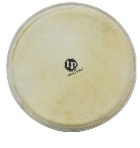 "12-1/2"" Replacement Drum Head for Galaxy Giovanni Djembe"