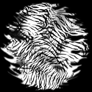 Tiger Skin Glass Gobo
