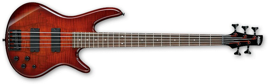 Charcoal Brown Burst Gio Series 5-String Electric Bass