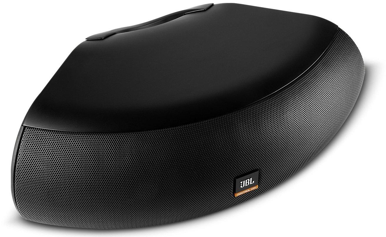 75W Indoor/Outdoor Speaker in Black