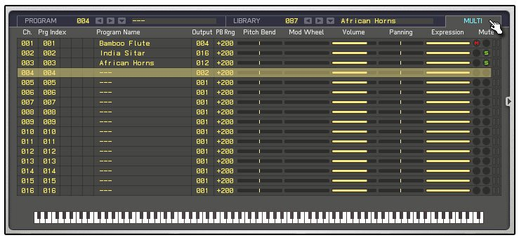 Sampler Software Virtual Instrument