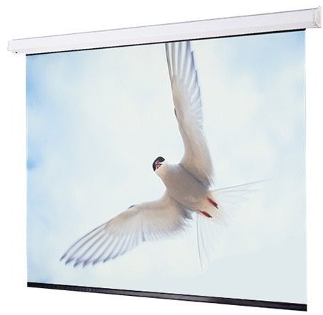 12 ft 16:10 Targa Electric Projection Screen with Matte White Surface and Low Voltage Motor