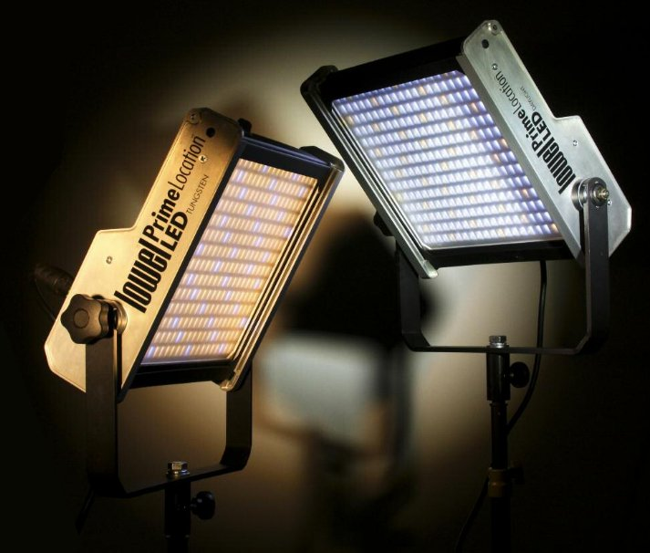 Prime Location Daylight Color 2 LED Light Kit with Gold Mount Battery Plate