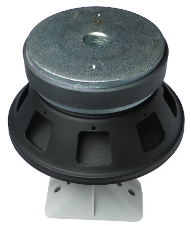 "8"" Speaker for R.25"