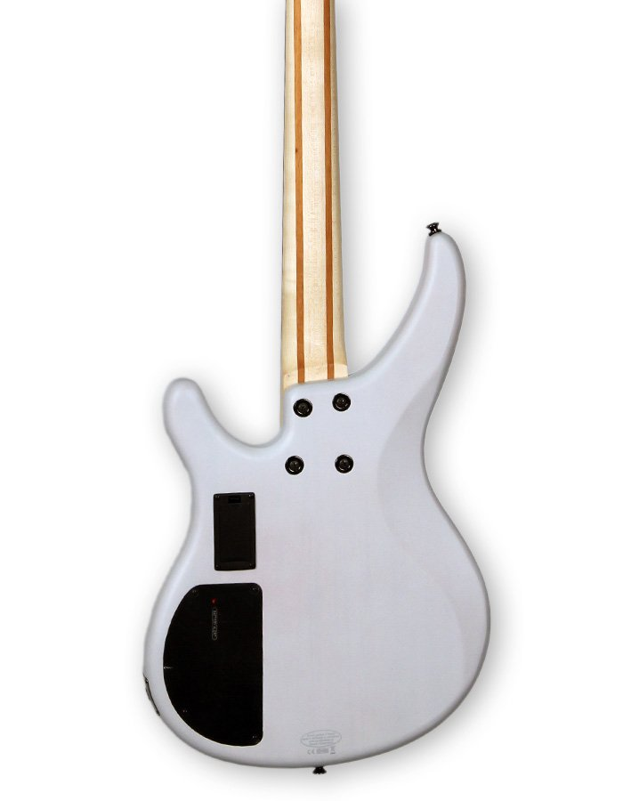 TRBX Series Electric Bass Guitar with HHB5 Pickups