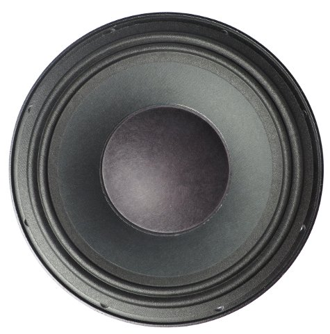 "10"" Woofer for Neo 210 and 410"