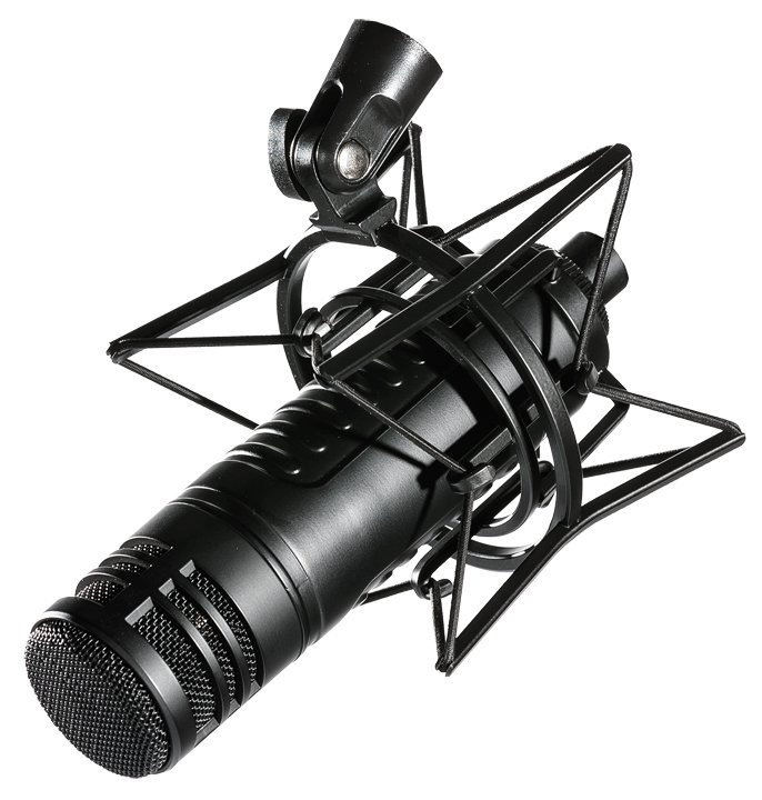 Large Diaphragm Dynamic Microphone