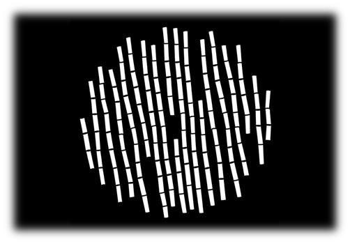 """Steel Gobo in """"Bamboo Stems"""" Design"""