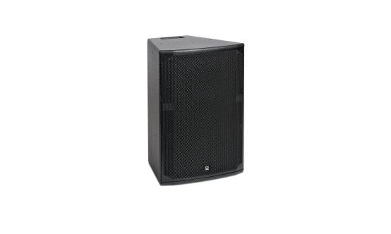 """300W 12"""" 2-Way Speaker in Black"""
