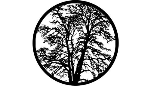 """""""Bare Tree"""" Pattern Steel Gobo"""