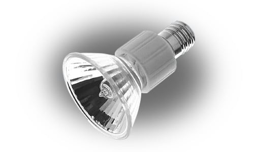JDR E17 Base Lamp