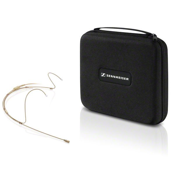 Headworn Microphone, Dual Earhook, Black