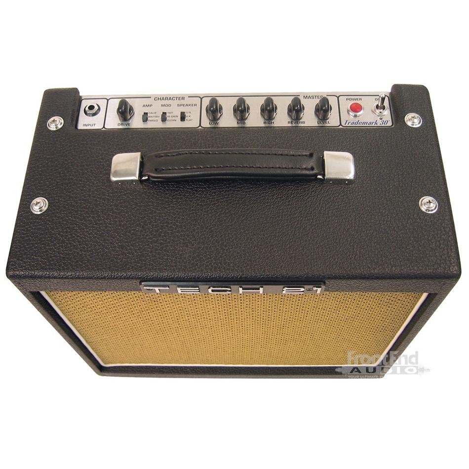 "Single Channel 1 x 10"", 30W Guitar Amp"